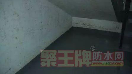 新房交付才两个月,电梯井积水,墙壁大面积霉斑,业主崩溃了