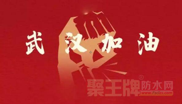 """在这场全民战""""疫""""中 四大""""防水之乡""""项城/平舆/寿光/石首做了哪些工作?"""