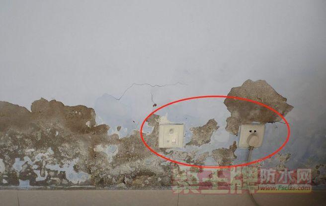 防水知识┃卫生间贴瓷砖,墙面还能不能做防水?