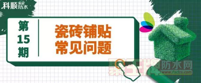 科师傅锦囊丨明明使用了瓷砖背胶,为何还会有掉砖现象?