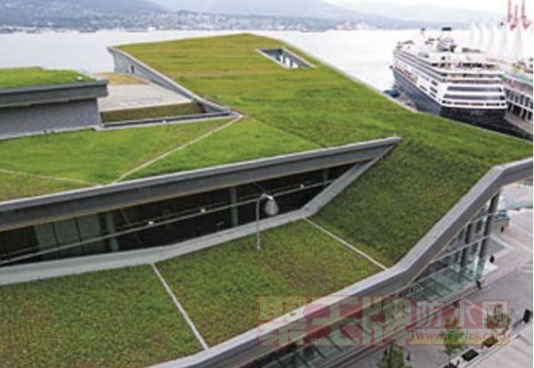 聚脲在节能减排种植屋面的应用前景怎么样?