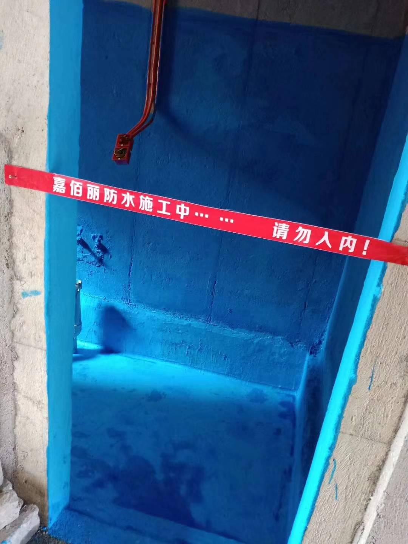 国标彩色柔韧型防水涂料 广州装修防水材料品牌代理加盟