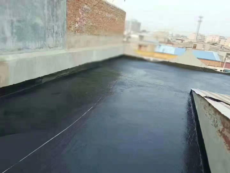 SBS液体防水卷材厂家天信建材优质供应商